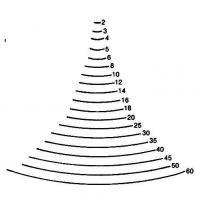 Sgorbie da legno profilo - 2 -
