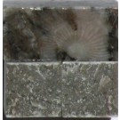 Tessere per mosaico Gris Perle kg.1