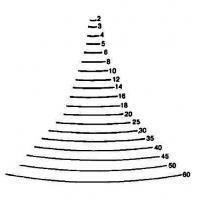 Sgorbie da legno profilo - 3 -