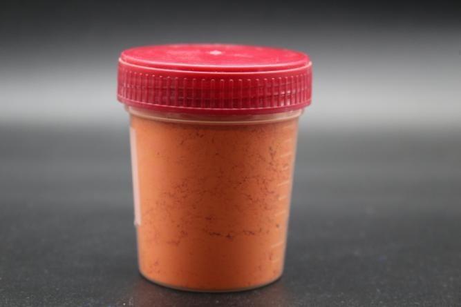 Pigmento Arancio Ercolano 100 grammi